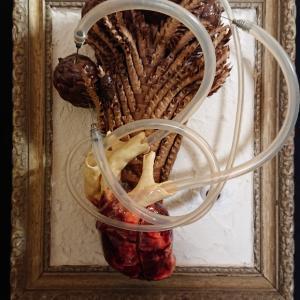 個展作品紹介④「食人植物」について。