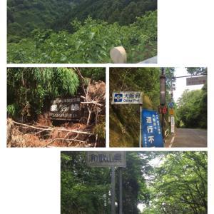 ◆鍋谷峠 おひとりさま