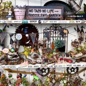 スリコの石鹸置きリメイク&ジャンクな庭乁( ˙ω˙ 乁)