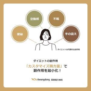 韓方ダイエット治療で処方されるダイエット薬の種類