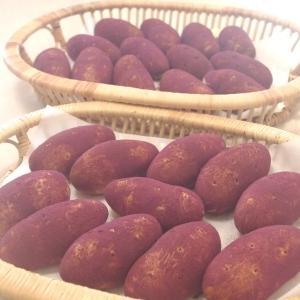 お芋パン&秋野菜のフォカッチャ&焼き林檎 2回目