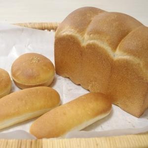 食事パン (ヨーグルト酵母)