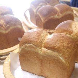 山型食パン&カレーベーコンロール&チョコチップクッキー
