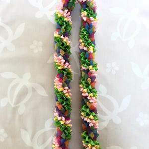 25作品目:Rainbow and Tropical Flowers