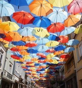 雨の日も色選びで楽しもう♪