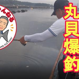 2020/08/02長浦釣行