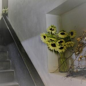 奥野ビルの階段オペラ