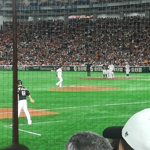 プロ野球交流戦♪