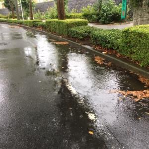 成田市道路 冠水の原因はなにか