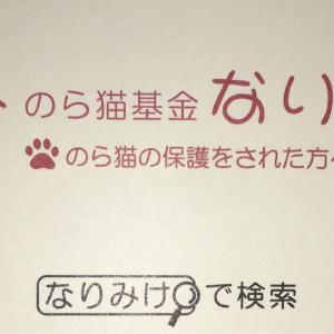 成田市 のら猫基金『なりみけ』の活動について