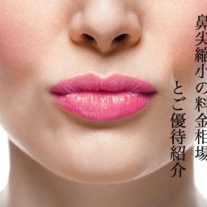 団子鼻を解消する鼻尖縮小術の費用相場を4つ美容外科で比較~名医紹介