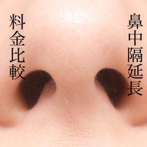 【名古屋エリア】鼻中隔延長の費用を比較してみた~失敗しない医師選び