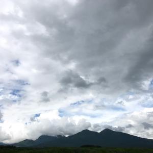 富士見町、カメリアニコティーさんでヨガとランチ!