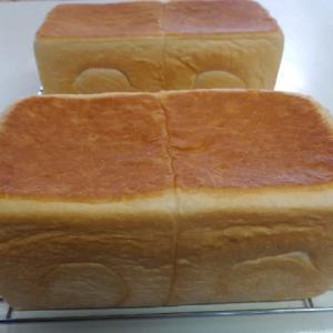 食パンを4本
