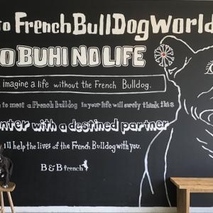 B&B french
