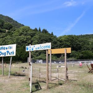 Namiki Dog Park