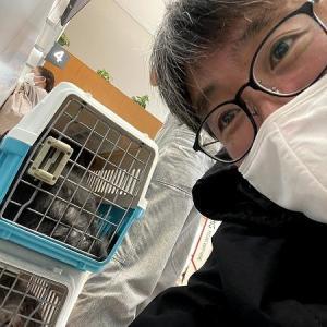 【空の旅】パケボラ 奄美-伊丹空港