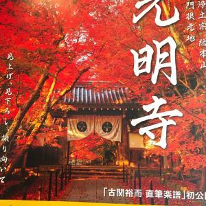 昨日の紅葉です・京都 (^o^)/