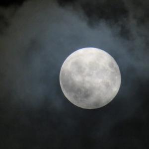 見えましたよ、中秋の名月 (*^^*)