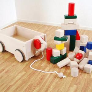 最近ボウイングの説明に積み木車が活躍している