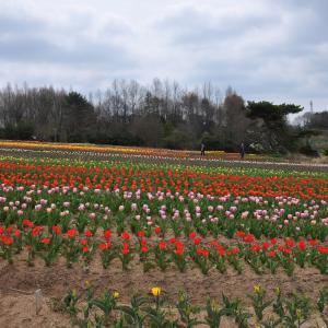春の広島3DAYS 一日目