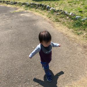 1歳5ヶ月ᐠ ♥︎ ᐟ