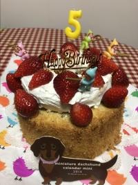 ♪ファンタ5歳のお誕生日♪
