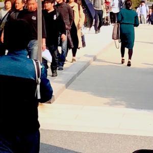 ワンコバスツアーで伊勢神宮にあるおかげ横丁に行っ来たよ