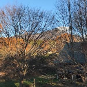 八ヶ岳の秋