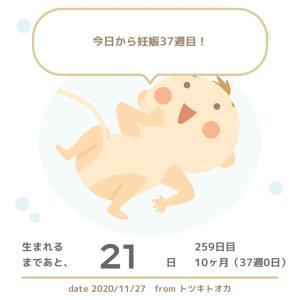 【◎正産期突入◎】