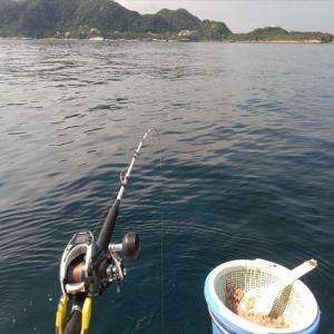 久しぶりで南房へイサキ釣りに行ってきました。