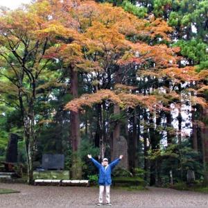 春日神社紅葉