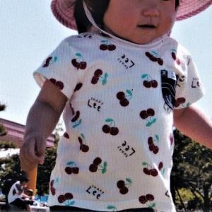 高田公園 道路端に私の孫の名前 葵が咲いていた
