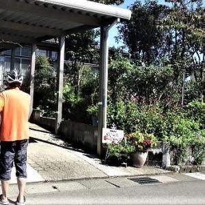 上越オープンガーデンと花めぐり 松永様ガーデン