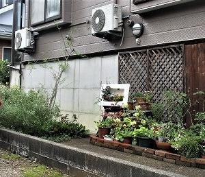 上越オープンガーデンと花めぐり 丸田様ガーデン