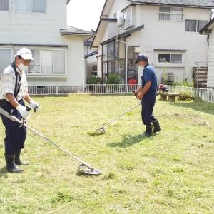防除、草刈り、境内清掃、3つの仕事❗️