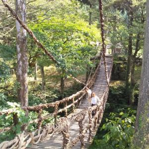 池田町かずら橋へ❗️