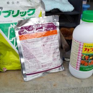 防除作業、除草剤散布