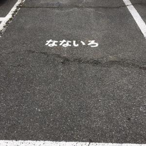 木曜~日曜まで「なないろしっぽ」常設譲渡会場IN岡山