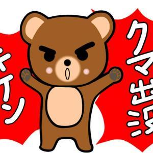 全国各地で熊が出没!?