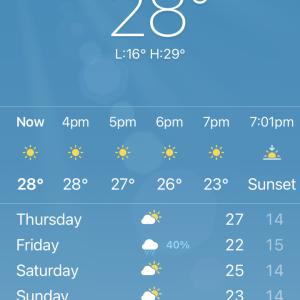 シドニーは、久しぶりの晴天です。