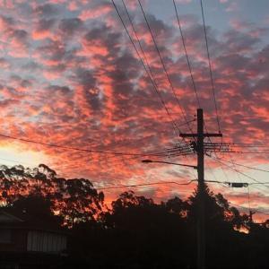 4月10日、シドニー夕焼け散歩