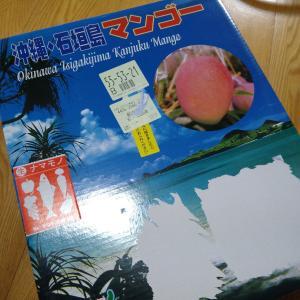 石垣島マンゴー2020