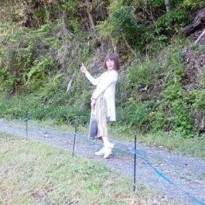 ハダキララ(5/29追記