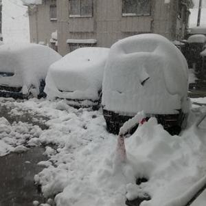 すっかり雪国になりました