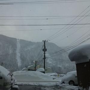 やっと降雪が落ち着きました♪
