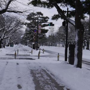 冬に行きたくなる場所は?