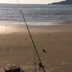 家から3分のパトンビーチでキス釣りして唐揚げ!ビールのつまみに最高^_^竿リールは300...