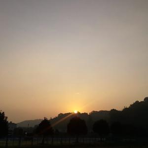 弱々しい日の出