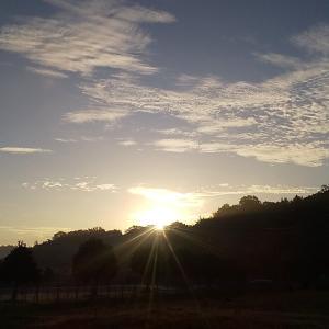 えらい暖かい朝